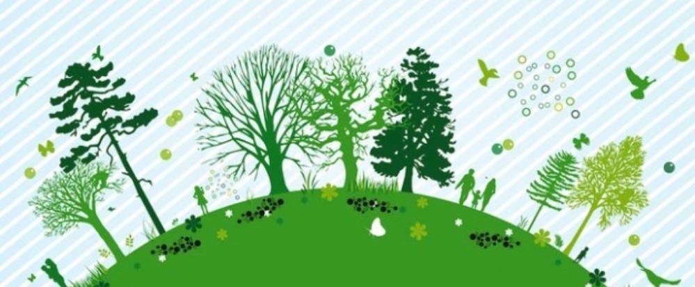 calidad-y-medio-ambiente